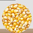 穀物牛のイメージ